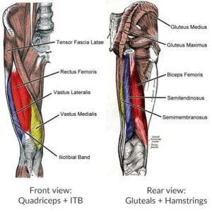muscleswimmingblog